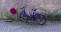 За знаниями по бездорожью: псковская девочка едет до школы 17 км на велосипеде