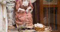 Сказка из старого чемодана: в Беларуси возрождают батлейку