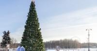 В Москве с понедельника начнут демонтировать елки