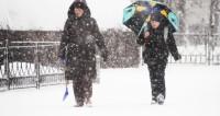 Снежная буря устроила камчатским школьникам дополнительный выходной