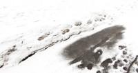 Штормовое предупреждение объявили в Оренбургской области