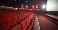 Минкульт назвал незаконной предпродажу билетов на «Приключения Паддингтона-2»