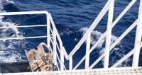 В Атлантическом море затонул траулер «Черная жемчужина»