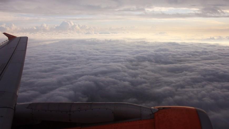 По факту крушения Су-29 в Ленобласти возбуждено уголовное дело