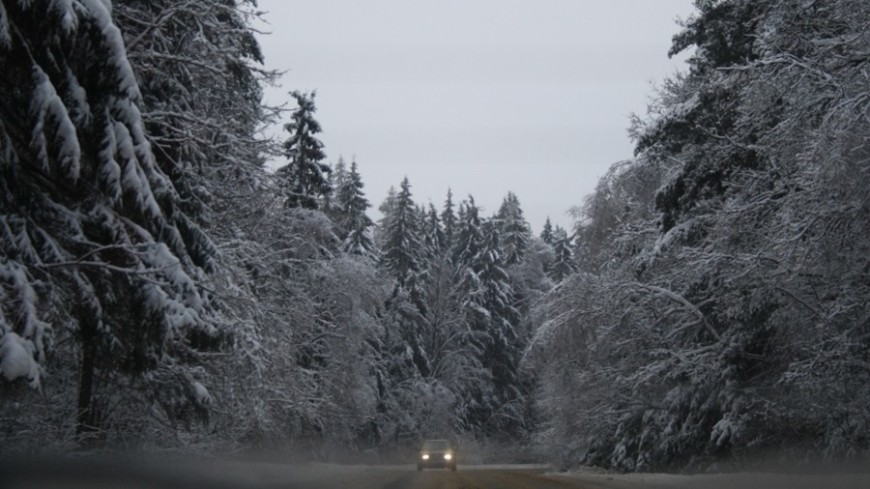 "Фото: Елизавета Шагалова, ""«МИР 24»"":http://mir24.tv/, дорога, зима, снег, снегопад"