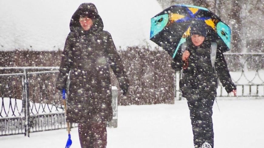 Канада готовится встретить снежный шторм