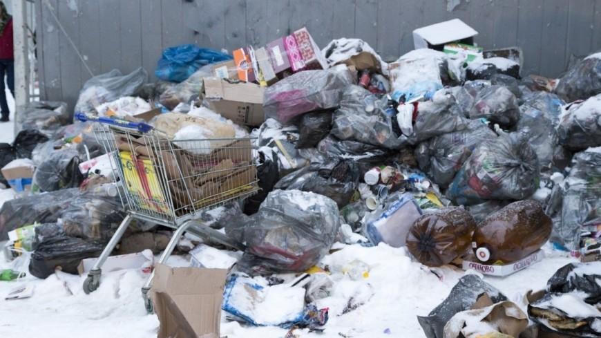 Синдром Плюшкина: жительница Кишинева устроила в квартире свалку