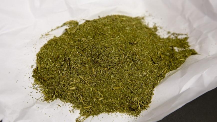 Наркотики и наркомания. ,наркотики, наркоман, наркотик, трава, гашиш, марихуана, косяк, ,наркотики, наркоман, наркотик, трава, гашиш, марихуана, косяк,