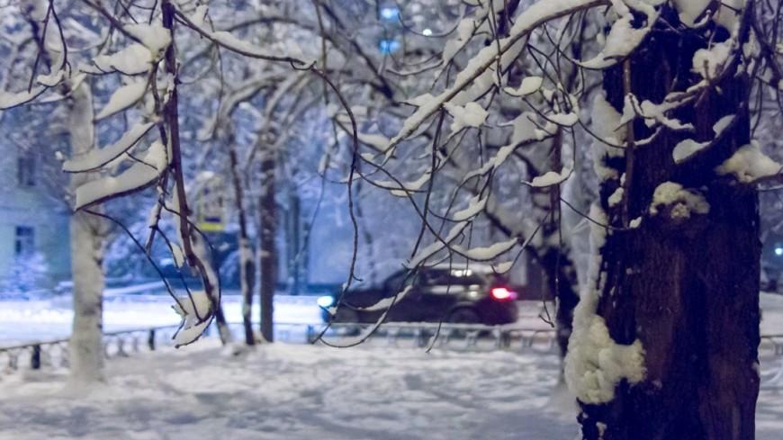 Кортеж Жириновского застрял во дворе возглавляемого им института