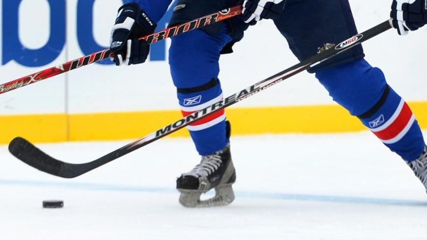 Фото: , хоккей