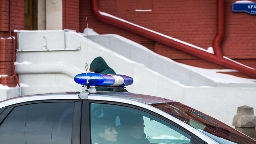 Сотрудники магазина на Новом Арбате избили покупателя тележкой