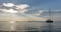 Российские пловцы пытались пересечь Амурский залив
