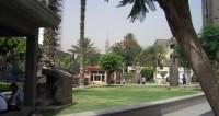 "египет Фото: Елена Любутова, ""МТРК «Мир»"":http://mirtv.ru/, египет"