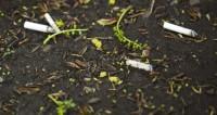 "Фото: Мария Андросова (МТРК «Мир») ""«Мир 24»"":http://mir24.tv/, сигареты, мусор, окурки, сигарета"