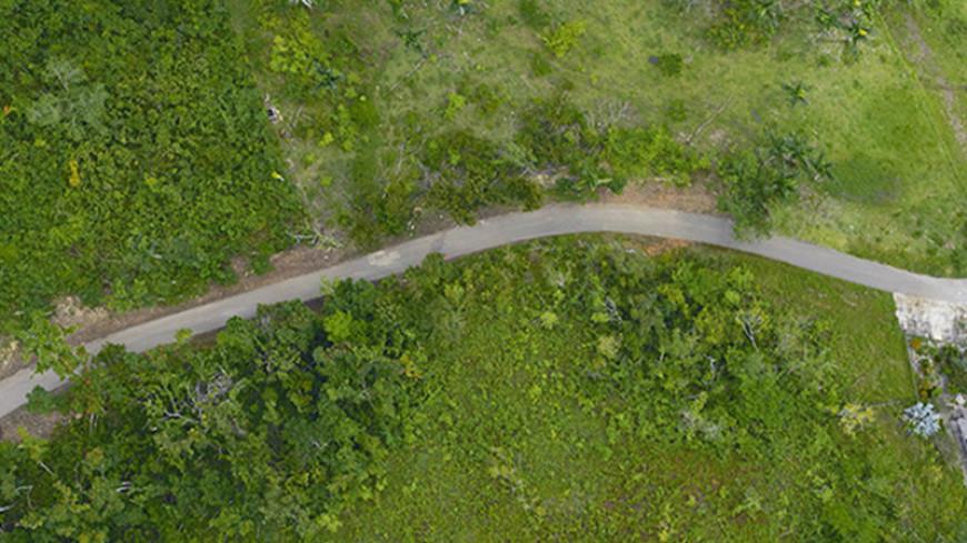 Команда NASA оценила ущерб тропическим лесам от урагана «Мария»