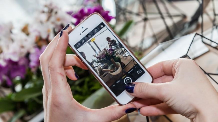 """Фото: Артем Куковский (МТРК «Мир») """"«Мир 24»"""":http://mir24.tv/, смартфон, орхидеи, флорариумы, сад в бутылке, ботаника, растения, рассада, огород, телефон, фото, фотографировать"""