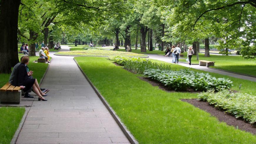 Основные работы по благоустройству парков Москвы завершатся к осени