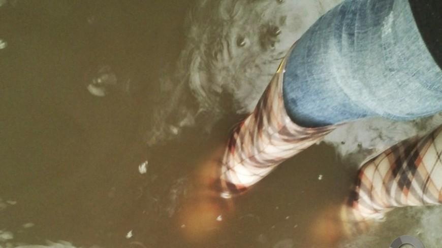 """Фото: Анжелика Сафронова, """"«Мир24»"""":http://mir24.tv/, дождь, ливень, дожди, лужи"""