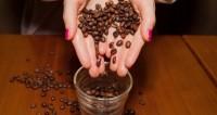 Названо еще одно полезное свойство кофе