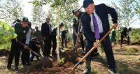 «Этот лес – мечта». Назарбаев посадил березы под Астаной