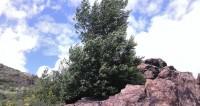 Абай и пещерное озеро: пять причин поехать в Усть-Каменогорск