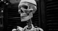 В «День мертвых» по Москве пройдут гигантские скелеты