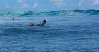 Американка переплыла с Кубы в США на доске для серфинга