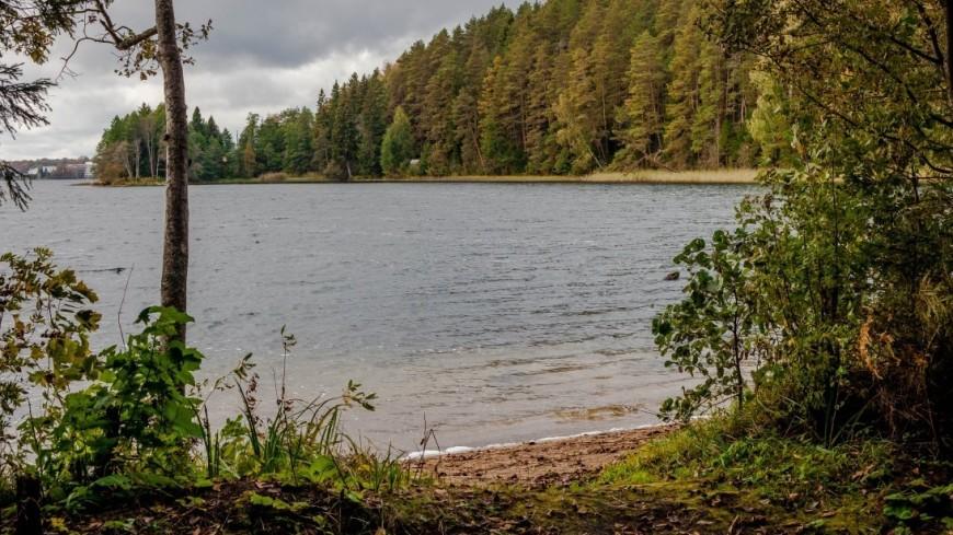 """Фото: Марина Дыкун (МТРК «Мир») """"«Мир 24»"""":http://mir24.tv/, природа, озеро валдай, лес, озеро"""