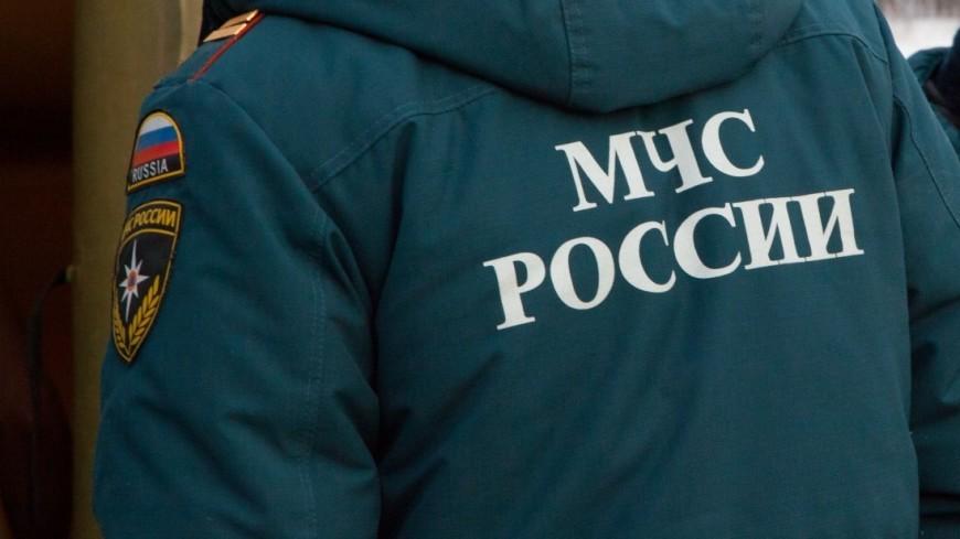 Здесь могут отдыхать дети: в России лагеря проверили на безопасность