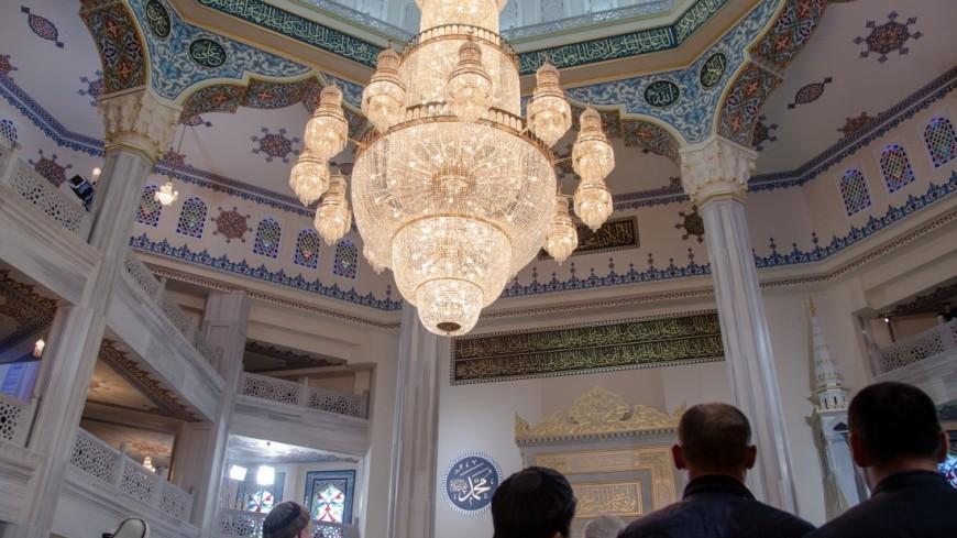 Нарушили закон: Австрия депортирует 40 имамов и закроет мечети