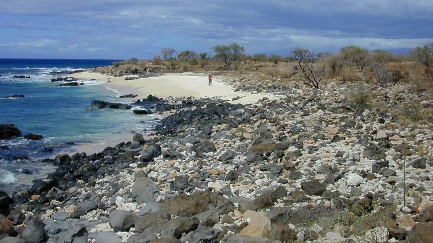 «Волосы Пеле» покрыли пляжи Гавайев