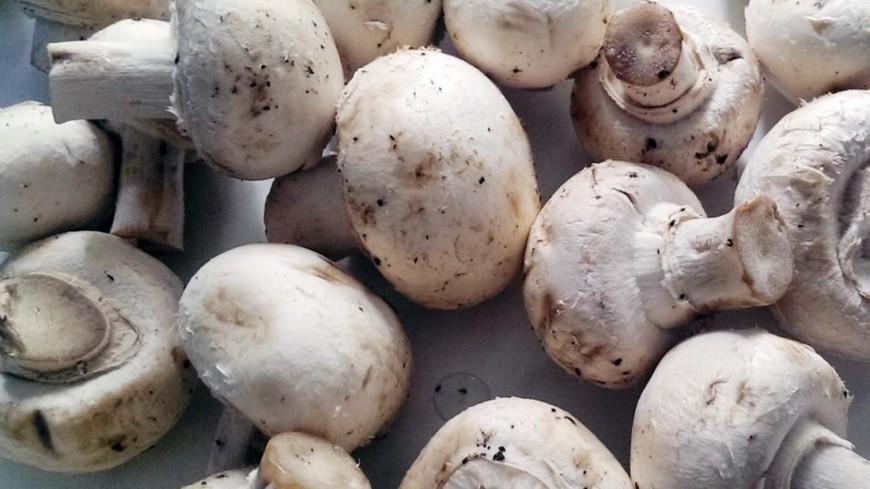 "Фото: Елизавета Шагалова, ""«МИР 24»"":http://mir24.tv/, шампиньоны, грибы"
