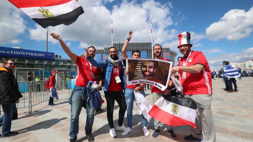 Из Каира в Санкт-Петербург прилетели более тысячи фанатов Египта
