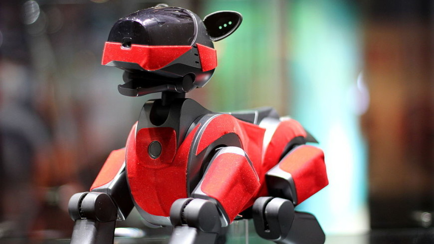 В Китае создали спасающего от одиночества робота-пса