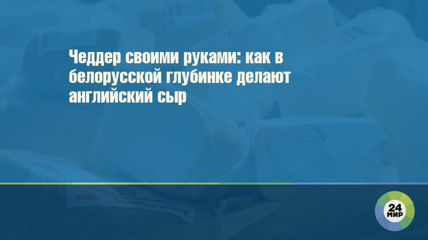 Чеддер своими руками: как в белорусской глубинке делают английский сыр
