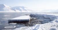В Китае начали строить первый корабль для полярного туризма