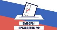Жена депутата призвала всех на выборы фривольным фото