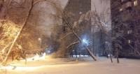 Феноменальное похолодание: Москву скуют январские морозы