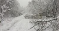 Ледяной дождь и морозы: какая погода ждет москвичей на этой неделе