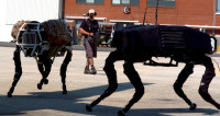 В интернете смоделировали последствия восстания машин