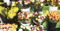 Праздничный ажиотаж: мужчины скупают цветы, не глядя на цены