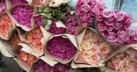 В Беларуси к 8 марта вырастили триста тысяч роз