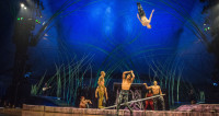 Смертельный номер: акробат Cirque du Soleil погиб во время шоу