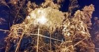 В Польшу пришли морозы и метели после 20-градусного тепла
