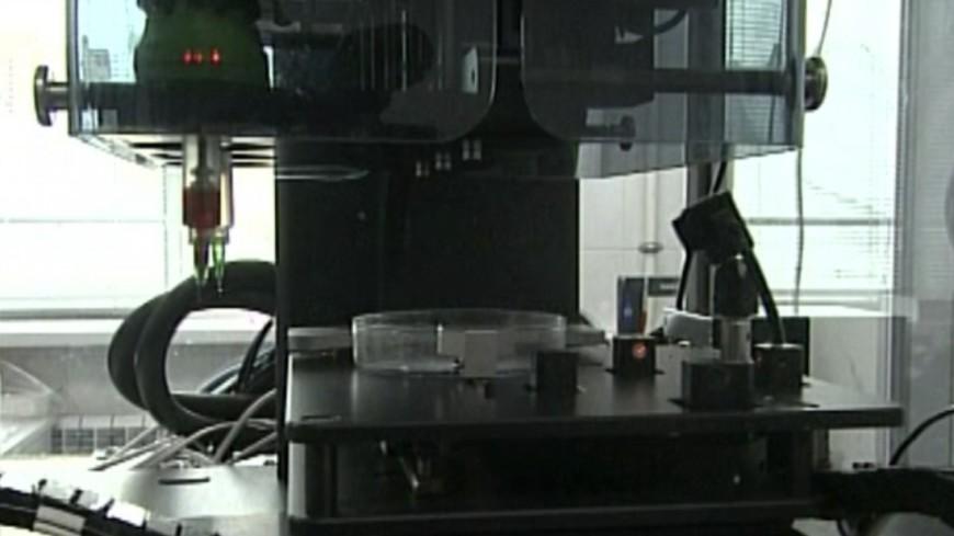 В США создали 3D-принтер для лечения онкологии