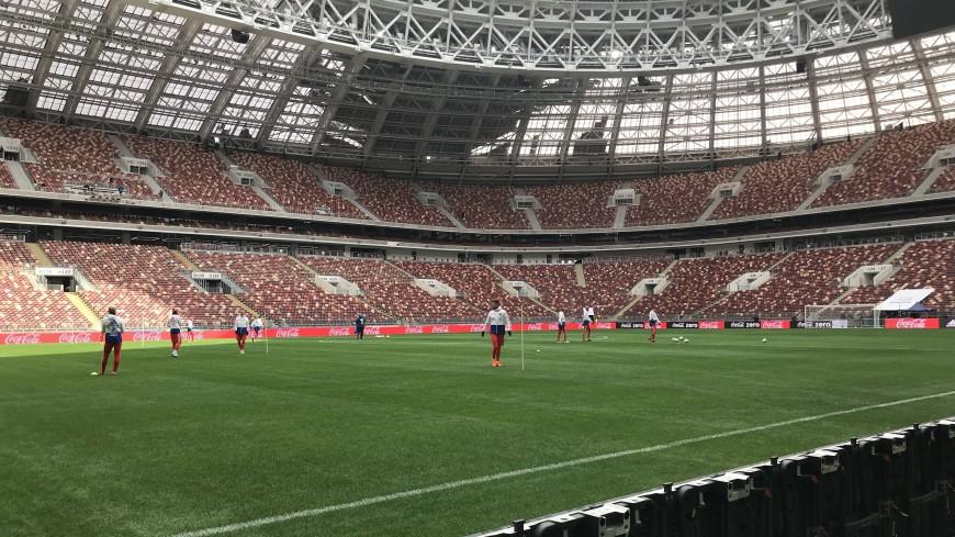 Порядок на матче Россия-Бразилия обеспечат около двух тысяч полицейских