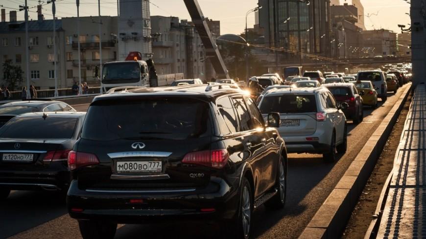 Москвичей попросили не оставлять в машинах детей и животных в жару