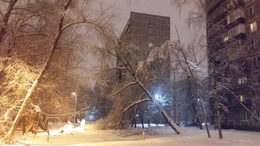 Март прощается с Москвой сильным снегопадом