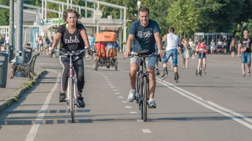 «Двухколесная нечисть»: за что ненавидят велосипедистов
