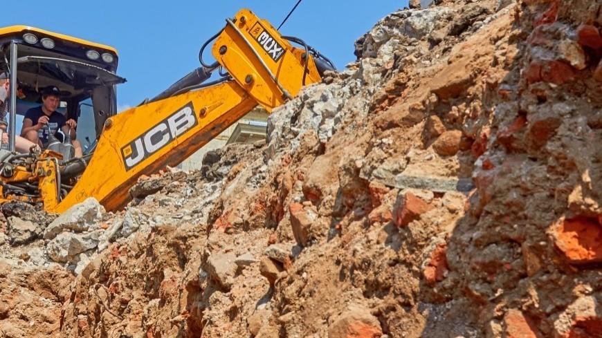 В Петербурге строители выкопали кости шерстистого носорога